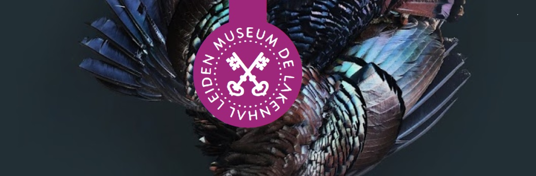 Tentoonstelling PILGRIMS NAAR AMERIKA - EN DE GRENZEN VAN VRIJHEID - Museum lakenhal Leiden